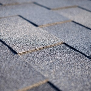 ottawa roofing services