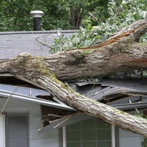 damaged roof ottawa